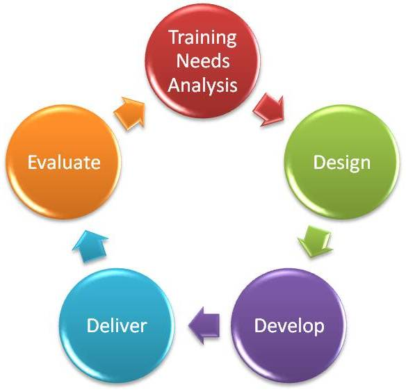 training and development strategy essay